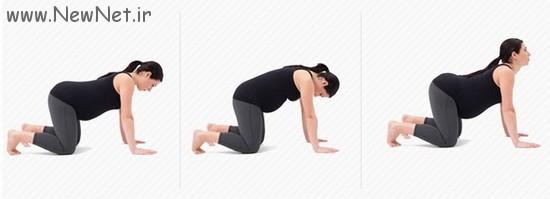 آموزش ورزش کردن در دوران حاملگی